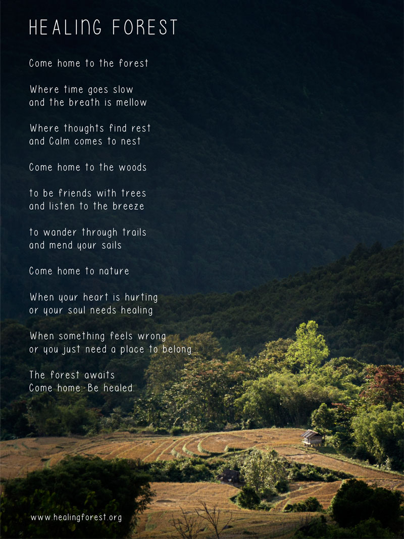 Healing Forest Poem