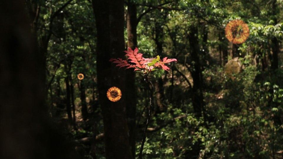 Sprites healing forest