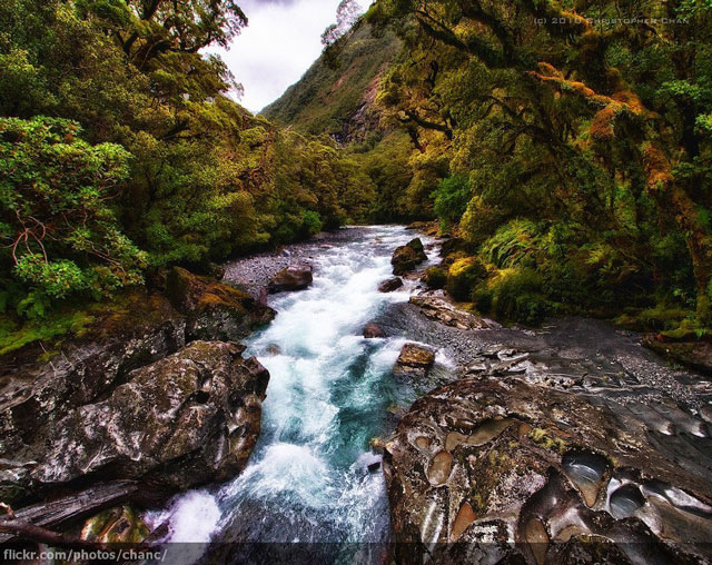new-zealand-water