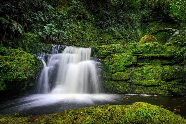 newzealand-falls