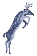 animal-Deer-small