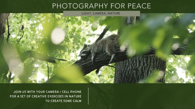 Photos-of-peace-poster-web