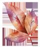 Leaf-small-3