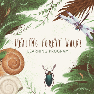 Healing-Forest-Walks
