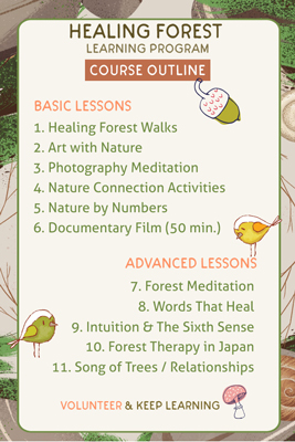 Healing Nature Walks - Course outline
