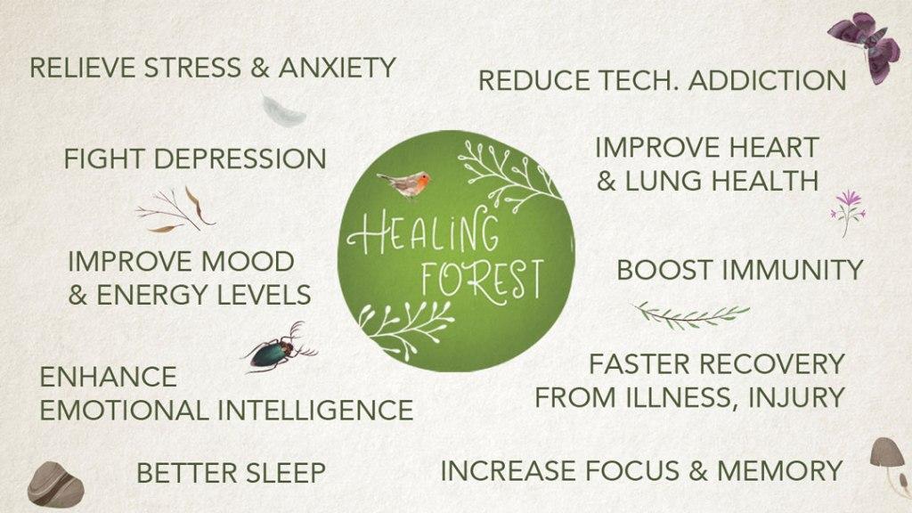 Nature walks and meditations - benefits
