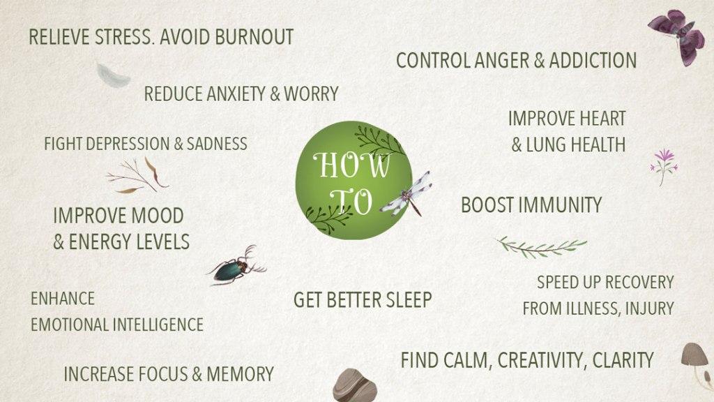 Nature Meditation benefits