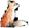 Nature Calm fox