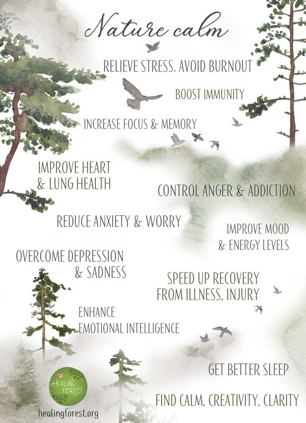 Nature Calm Benefits