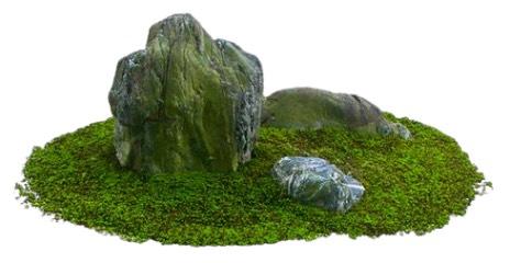 Meditation Garden Rocks