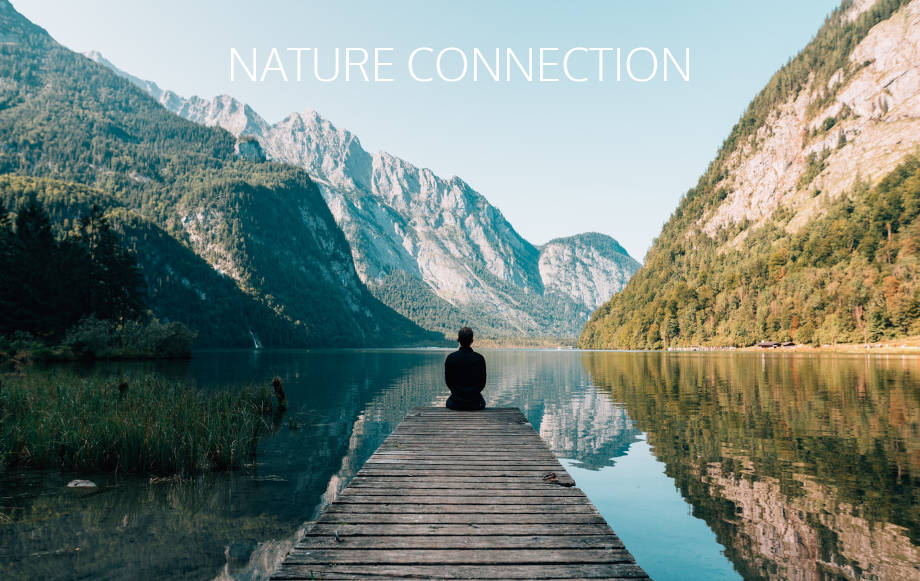 Nature Connection activities